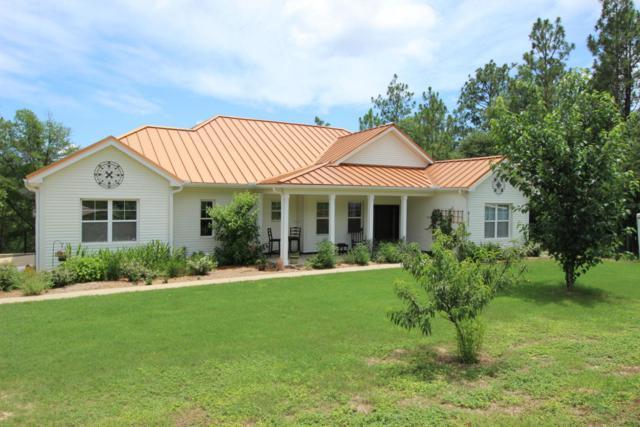 6137 Mockingbird Hill Court, Crestview, FL 32539 (MLS #773150) :: Scenic Sotheby's International Realty