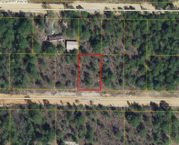Lot 35 E Tiger Lily Lane, Defuniak Springs, FL 32433 (MLS #779480) :: Counts Real Estate Group