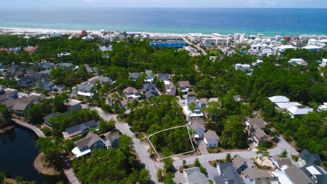 LOT 147 Sextant Lane, Watersound, FL 32461 (MLS #779961) :: RE/MAX By The Sea