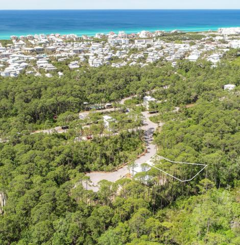 Lot 65 Silver Maple Drive, Seacrest, FL 32461 (MLS #779964) :: Berkshire Hathaway HomeServices Beach Properties of Florida