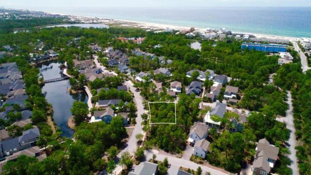Lot 155 Sheepshank Lane, Watersound, FL 32461 (MLS #779967) :: The Premier Property Group