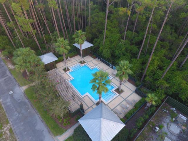 Lot 16 Silver Maple Drive, Seacrest, FL 32461 (MLS #781024) :: Luxury Properties Real Estate