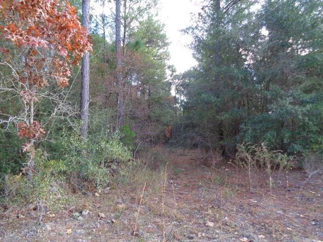 13&15 Rio Ranchero Road, Defuniak Springs, FL 32433 (MLS #787350) :: Vacasa Real Estate