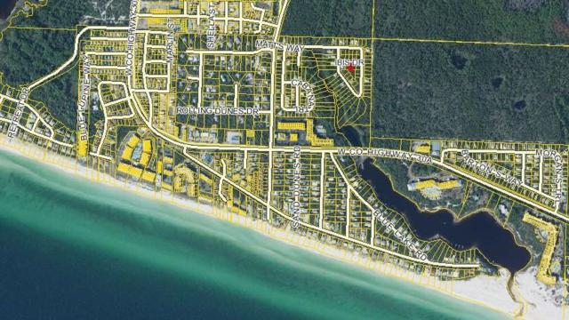 50 Ibis Drive, Santa Rosa Beach, FL 32459 (MLS #787724) :: Scenic Sotheby's International Realty
