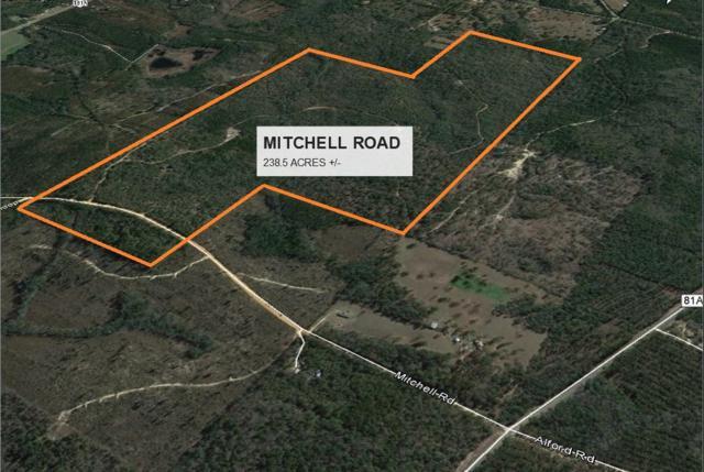 238 +/- AC Mitchell Road, Ponce De Leon, FL 32455 (MLS #788541) :: Coast Properties