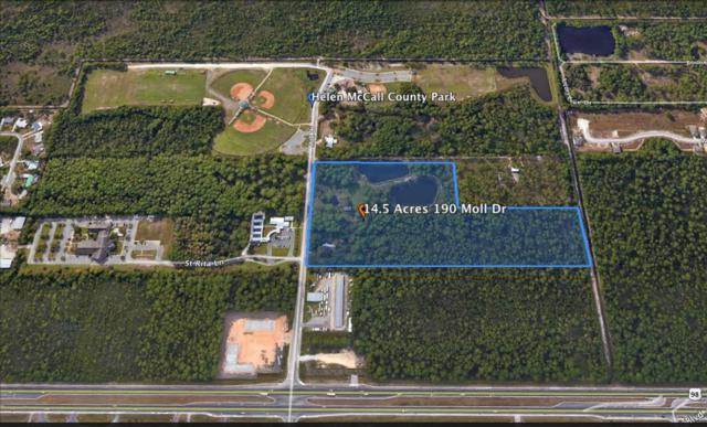 190 Moll Drive, Santa Rosa Beach, FL 32459 (MLS #792522) :: ResortQuest Real Estate