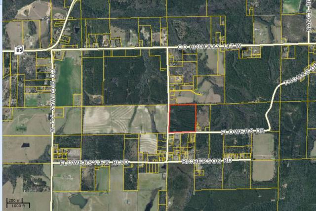 Paxton 40 Flowersview Boulevard, Laurel Hill, FL 32567 (MLS #794435) :: Luxury Properties Real Estate