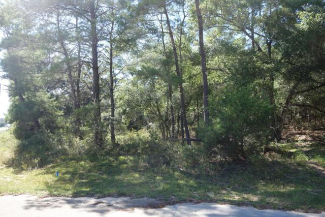 Lots 24-27 W State Hwy 20, Freeport, FL 32439 (MLS #794447) :: Scenic Sotheby's International Realty