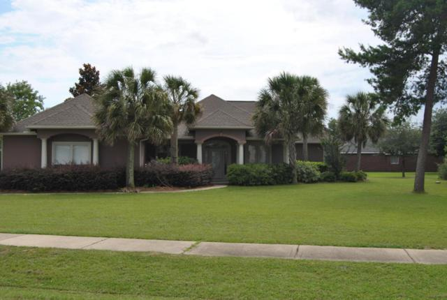 1464 Brushed Dunes Circle, Freeport, FL 32439 (MLS #795830) :: Keller Williams Realty Emerald Coast