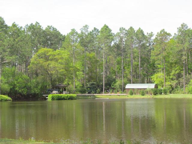 20AC Fox Hill Road, Defuniak Springs, FL 32433 (MLS #796015) :: ResortQuest Real Estate