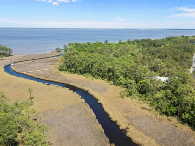 LOT 2 Ansley Forest Drive, Point Washington, FL 32459 (MLS #796025) :: The Premier Property Group