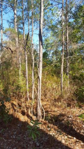 Lot 13 Bay Grove Road, Freeport, FL 32439 (MLS #797653) :: Keller Williams Emerald Coast