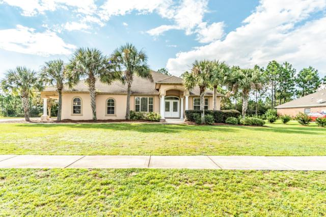 54 Double Eagle Court, Freeport, FL 32439 (MLS #799649) :: Luxury Properties Real Estate