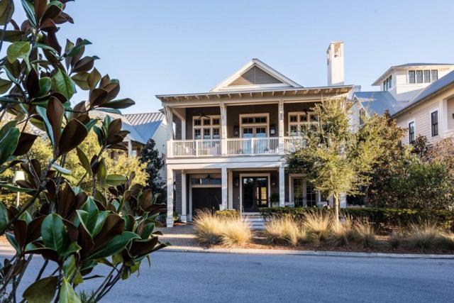 335 Needlerush Drive, Santa Rosa Beach, FL 32459 (MLS #803692) :: Homes on 30a, LLC
