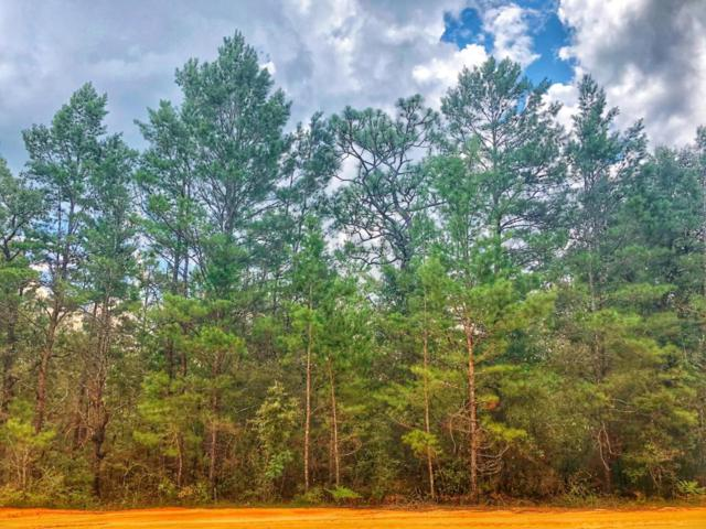 Lot 18 E White Rose Street, Defuniak Springs, FL 32433 (MLS #803858) :: Luxury Properties Real Estate