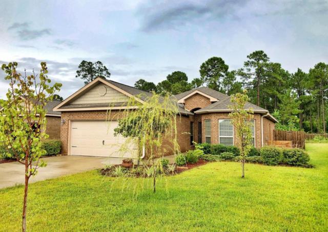 874 Cocobolo Drive, Santa Rosa Beach, FL 32459 (MLS #804117) :: ResortQuest Real Estate