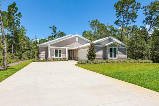 80 Hibernate Way, Freeport, FL 32439 (MLS #804761) :: Classic Luxury Real Estate, LLC