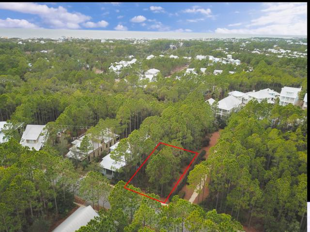 65 Royal Fern Way, Santa Rosa Beach, FL 32459 (MLS #805187) :: 30a Beach Homes For Sale