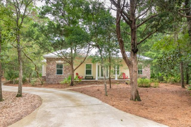 117 N Blue Heron Drive, Santa Rosa Beach, FL 32459 (MLS #806423) :: Classic Luxury Real Estate, LLC