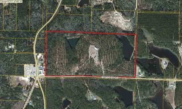 75AC Chesser Road, Defuniak Springs, FL 32433 (MLS #807930) :: Scenic Sotheby's International Realty