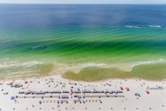 16819 Front Beach Road Unit 2907, Panama City Beach, FL 32413 (MLS #808329) :: Coastal Luxury