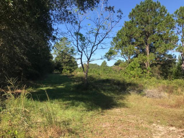 0 County Hwy 1087, Mossy Head, FL 32434 (MLS #809631) :: Keller Williams Emerald Coast