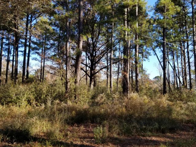 .75 Acre Auburn Road, Crestview, FL 32539 (MLS #812356) :: ResortQuest Real Estate