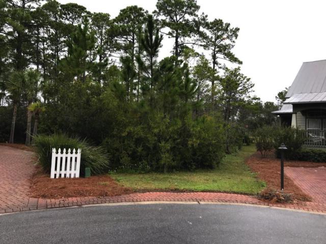 16 Palmetto Palm Court, Santa Rosa Beach, FL 32459 (MLS #812586) :: ResortQuest Real Estate