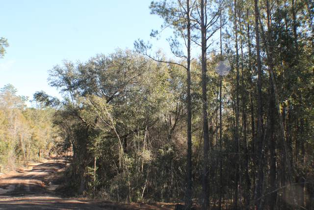 Lot 5 Forest Hills Drive, Milton, FL 32570 (MLS #812805) :: Back Stage Realty