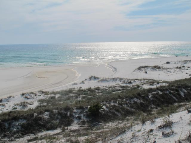 209 Old Beach Road, Santa Rosa Beach, FL 32459 (MLS #814444) :: Luxury Properties Real Estate