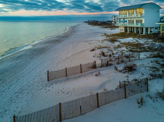 36 Walton Magnolia Lane, Inlet Beach, FL 32461 (MLS #814528) :: Classic Luxury Real Estate, LLC