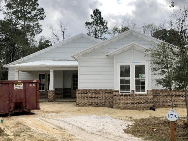 117 Sun Bear Circle, Freeport, FL 32439 (MLS #815385) :: Luxury Properties Real Estate