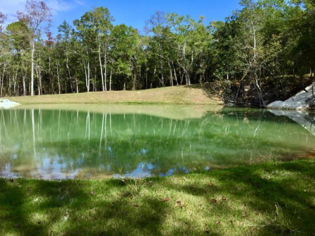 5730 Strickland Road, Ebro, FL 32437 (MLS #815963) :: Keller Williams Emerald Coast