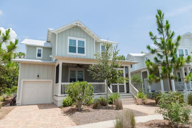 64 Salamander Circle, Santa Rosa Beach, FL 32459 (MLS #817151) :: 30A Real Estate Sales