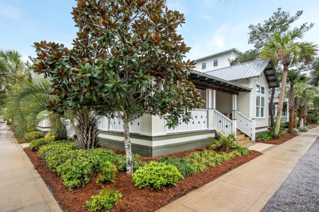 55 Beach Bike Way, Seacrest, FL 32461 (MLS #817587) :: Luxury Properties Real Estate