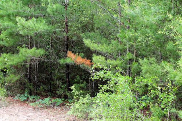 6 Acres Laird Road, Mossy Head, FL 32434 (MLS #819857) :: Counts Real Estate on 30A