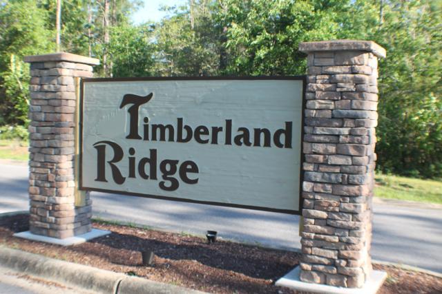 95 Lots Timberland Ridge S/D, Crestview, FL 32539 (MLS #821565) :: CENTURY 21 Coast Properties