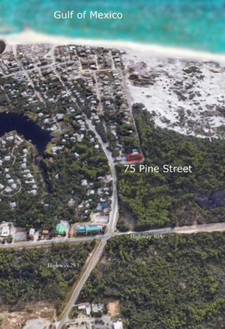 75 Pine Street, Santa Rosa Beach, FL 32459 (MLS #821885) :: Counts Real Estate Group