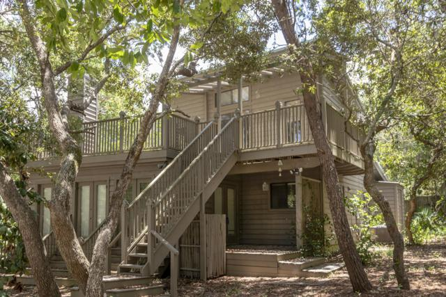 205 Thyme Street, Santa Rosa Beach, FL 32459 (MLS #823638) :: Scenic Sotheby's International Realty