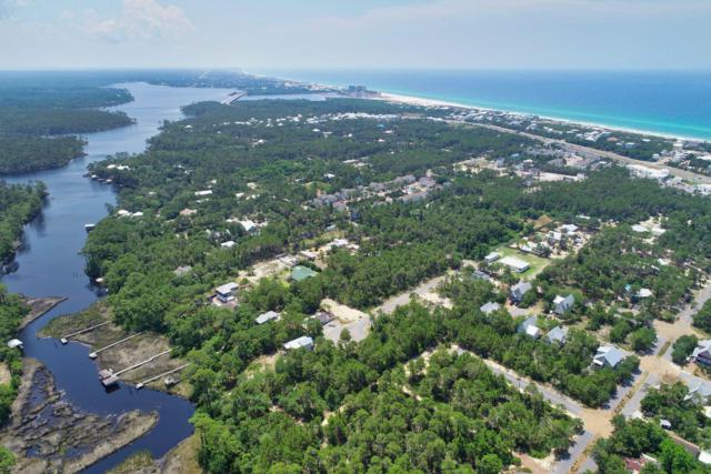 12 Pine Cone Trail, Inlet Beach, FL 32461 (MLS #823868) :: Counts Real Estate on 30A