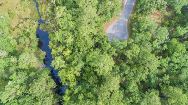 Lot 14 Bear Creek Court, Freeport, FL 32439 (MLS #824553) :: Hammock Bay