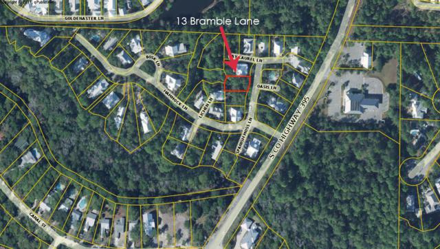 13 Bramble Lane, Santa Rosa Beach, FL 32459 (MLS #825405) :: Somers & Company