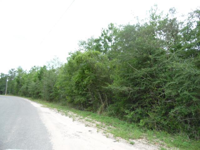 Lot 15 W Brahms Drive, Defuniak Springs, FL 32433 (MLS #825605) :: Somers & Company