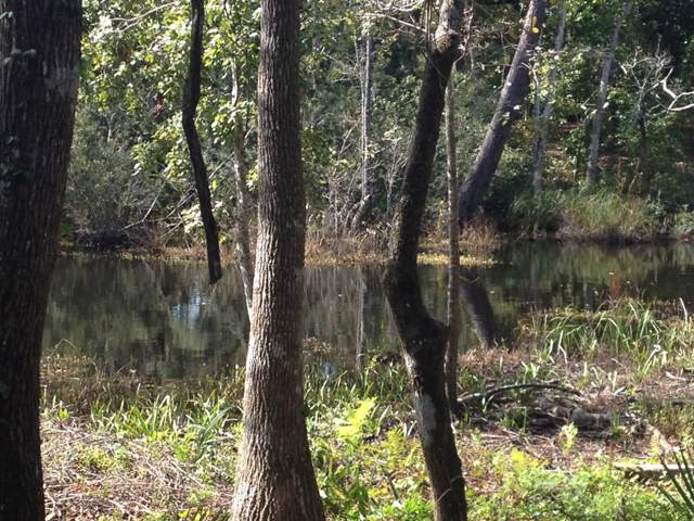 Lot 8 Waterview Cove Dr., Freeport, FL 32439 (MLS #828095) :: Scenic Sotheby's International Realty