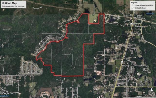 743.37 AC Welannee Boulevard, Crestview, FL 32536 (MLS #828541) :: Coastal Luxury