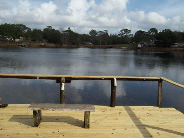194 Red Eye Road, Defuniak Springs, FL 32433 (MLS #829374) :: The Premier Property Group