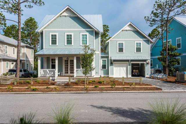 313 E Royal Fern Way, Santa Rosa Beach, FL 32459 (MLS #837195) :: Berkshire Hathaway HomeServices Beach Properties of Florida