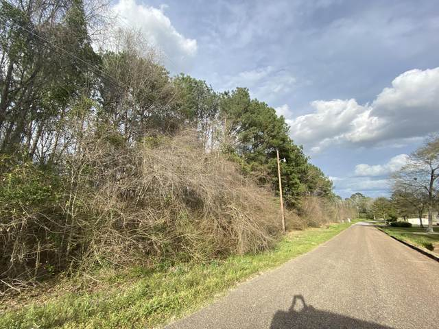 B3 Duval Drive, Opp, AL 36467 (MLS #842335) :: Scenic Sotheby's International Realty