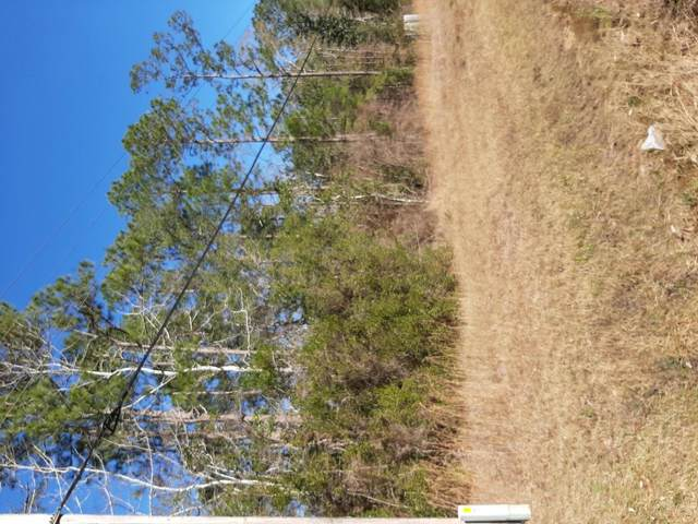 TBD Hwy 20 West, Freeport, FL 32439 (MLS #844746) :: ResortQuest Real Estate