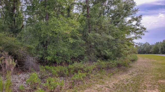 Lot 26 Shenandoah Blvd., Chipley, FL 32428 (MLS #848668) :: Back Stage Realty